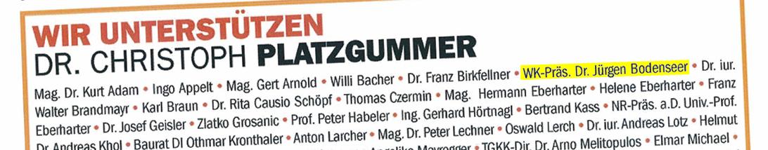 Unterstützerkomitee für Christoph Platzgummer