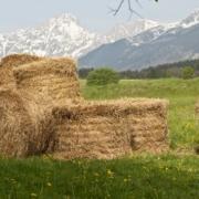 Agrargemeinschaften Tirol
