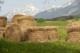 Ein Feld in Tirol