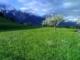 Obsteig in Tirol